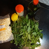 ingredients pesto